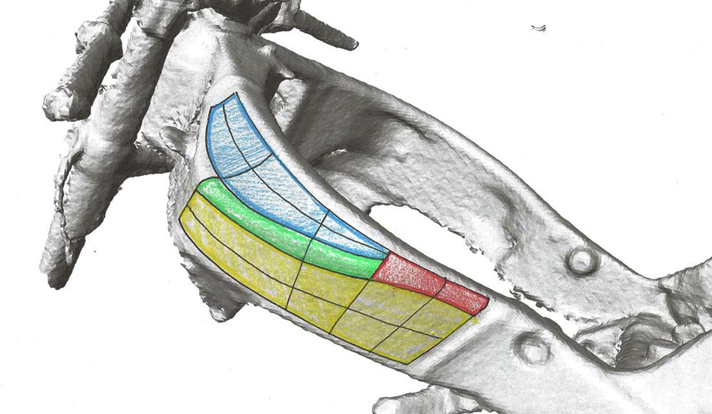 Mô tả các bề mặt 3D